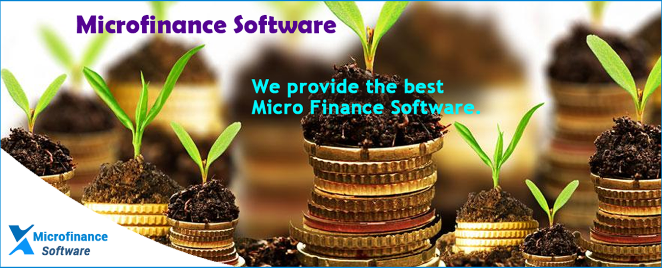 Microfinanace software.png